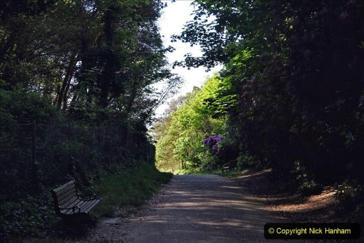 2020-05-20 Covid 19 Walk to the beach at Branksome Chine, Poole, Dorset. (32) 032