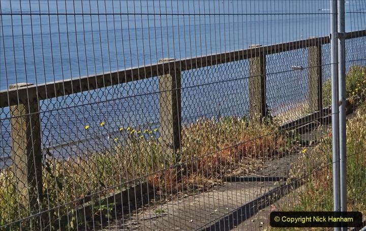 2020-05-20 Covid 19 Walk to the beach at Branksome Chine, Poole, Dorset. (49) 049
