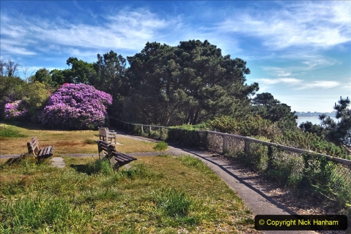 2020-05-20 Covid 19 Walk to the beach at Branksome Chine, Poole, Dorset. (58) 058