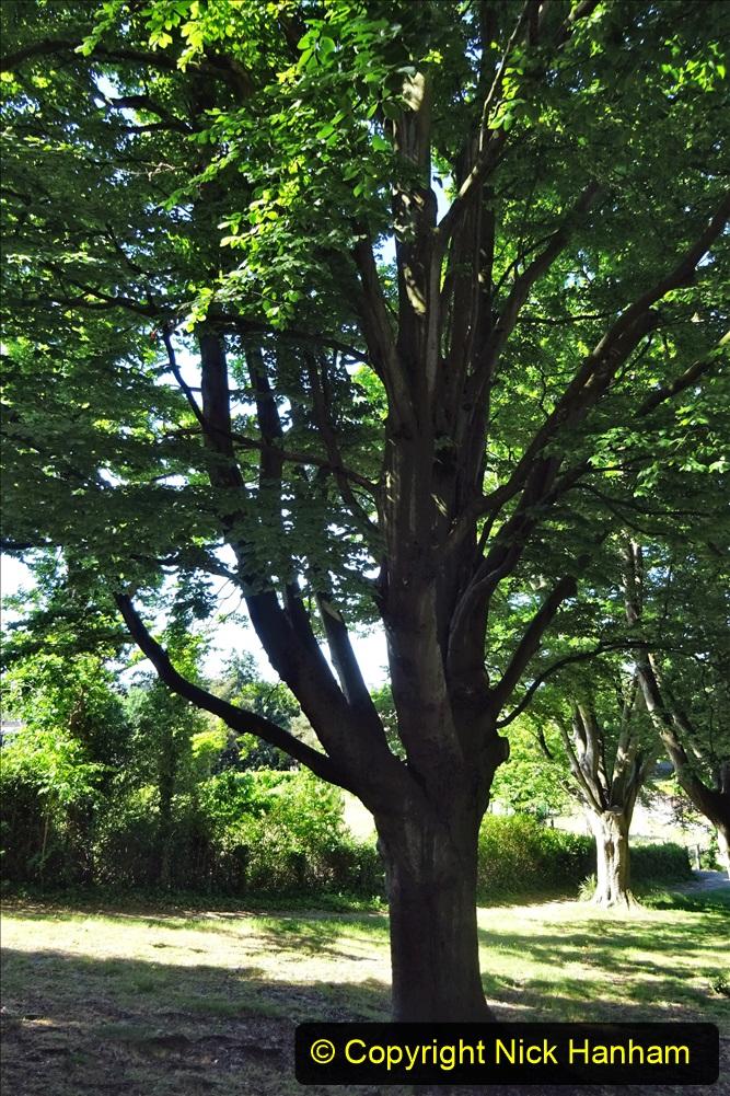 2020_05_26 Covid 19 Walk Alexandra Park, Parkstone, Poole, Dorset. (44) 044