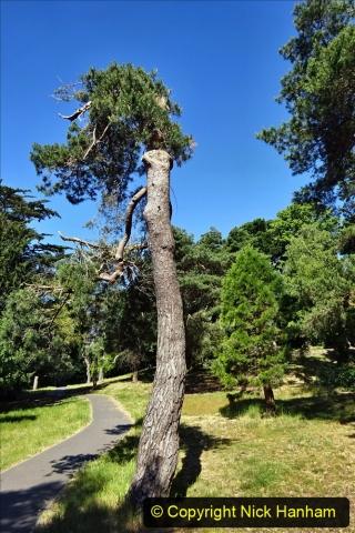 2020_05_26 Covid 19 Walk Alexandra Park, Parkstone, Poole, Dorset. (25) 025
