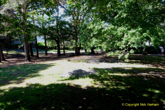 2020_05_26 Covid 19 Walk Alexandra Park, Parkstone, Poole, Dorset. (42) 042