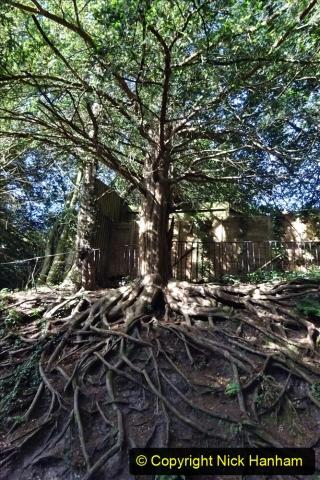 2020-05-27 Covid 19 Walks Alum Chine - Robert Louis Stevenson - View Point - Parkstone Heights. (13) 013