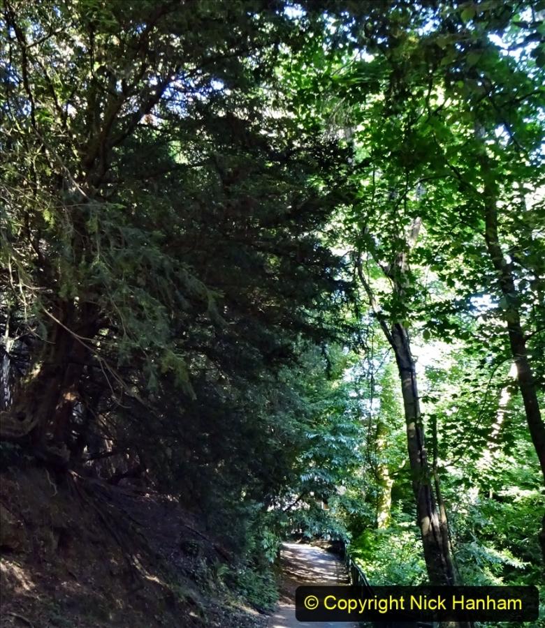 2020-05-27 Covid 19 Walks Alum Chine - Robert Louis Stevenson - View Point - Parkstone Heights. (15) 015
