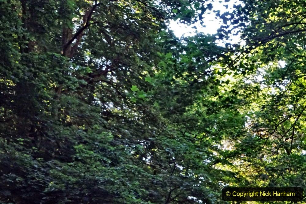 2020-05-27 Covid 19 Walks Alum Chine - Robert Louis Stevenson - View Point - Parkstone Heights. (19) 019