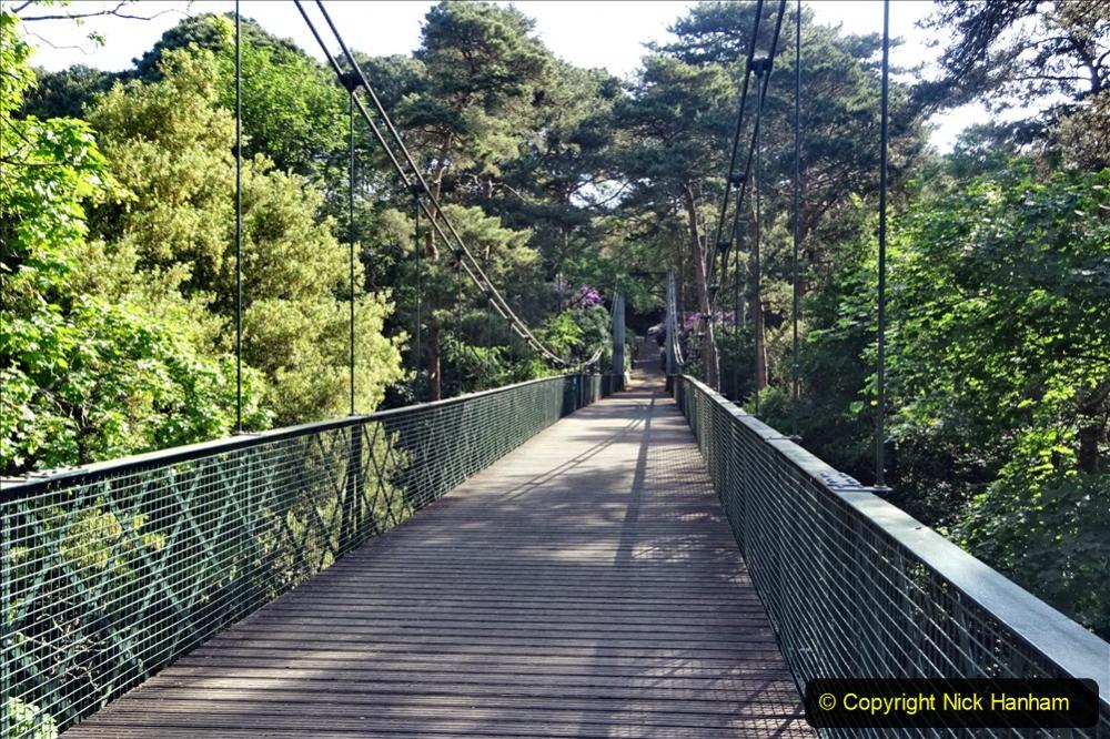 2020-05-27 Covid 19 Walks Alum Chine - Robert Louis Stevenson - View Point - Parkstone Heights. (32) 032