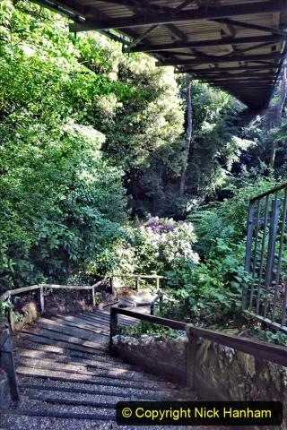 2020-05-27 Covid 19 Walks Alum Chine - Robert Louis Stevenson - View Point - Parkstone Heights. (39) 039
