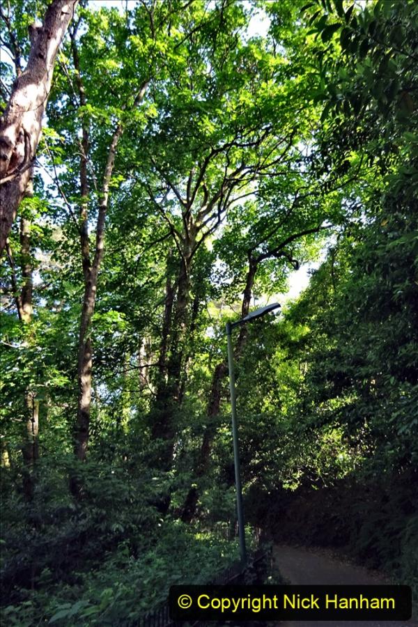 2020-05-27 Covid 19 Walks Alum Chine - Robert Louis Stevenson - View Point - Parkstone Heights. (4) 004