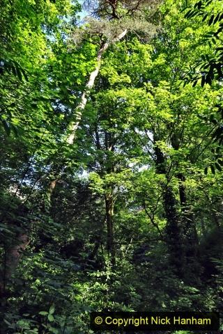 2020-05-27 Covid 19 Walks Alum Chine - Robert Louis Stevenson - View Point - Parkstone Heights. (66) 066