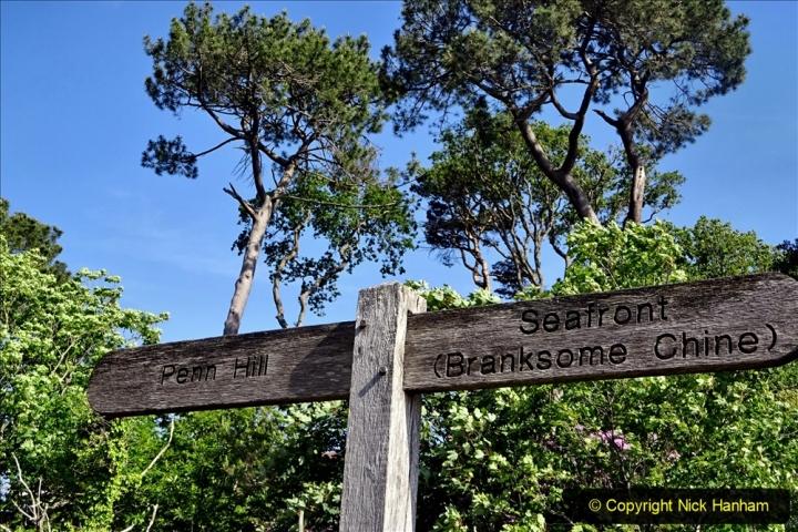 2020-05-28 Covid 19 Walk Branksome, Poole Dorset to Branksome Chine sea front. (7) 001