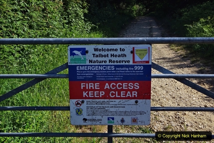 2020-05-30 Covid 19 Walk Coy Pond to Talbot Heath and area. (35) 035