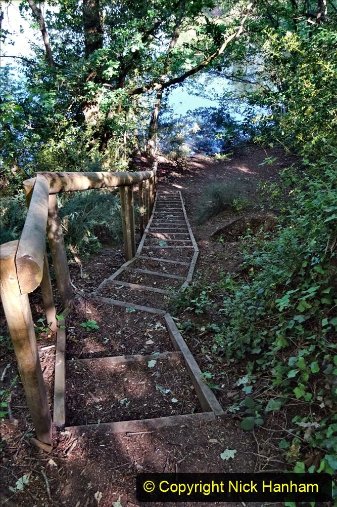 2020-05-31 Covid 19 Walk Alder Hills Nature Reserve Poole, Dorset. (20) 020