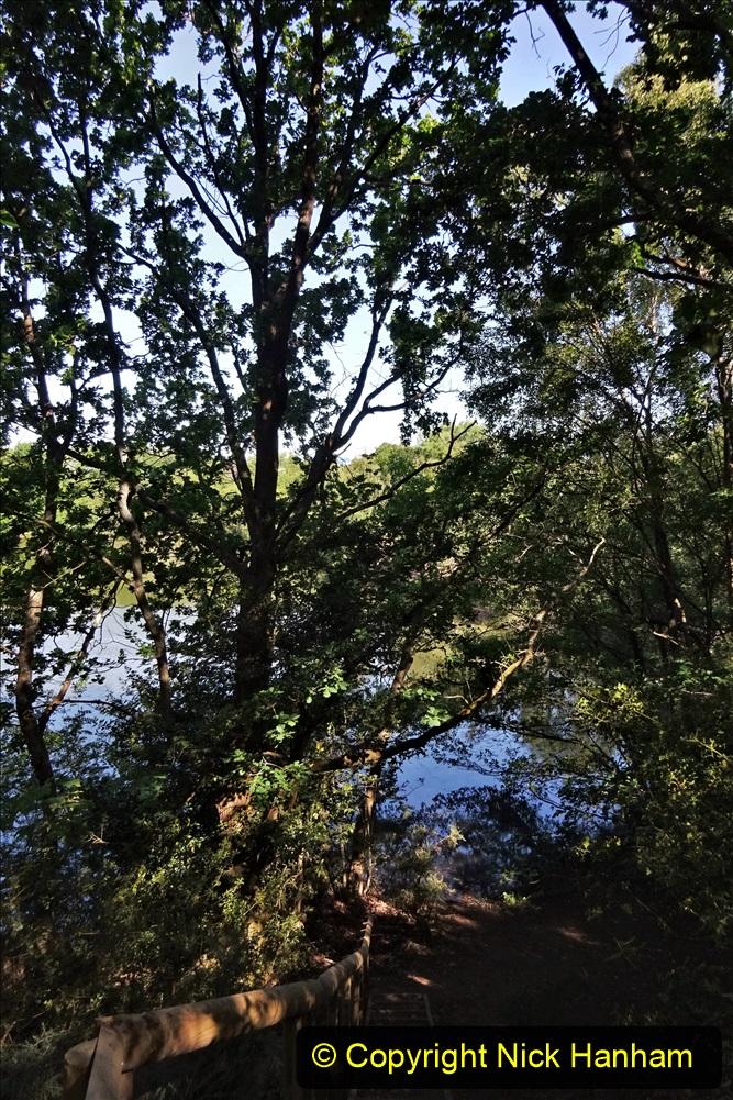 2020-05-31 Covid 19 Walk Alder Hills Nature Reserve Poole, Dorset. (21) 021