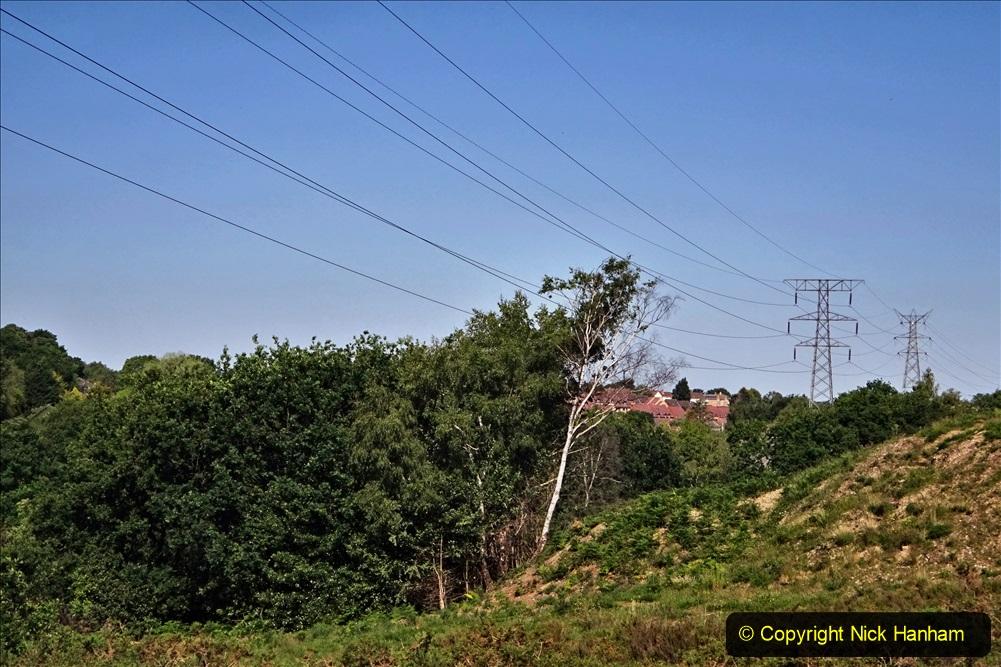 2020-05-31 Covid 19 Walk Alder Hills Nature Reserve Poole, Dorset. (22) 022