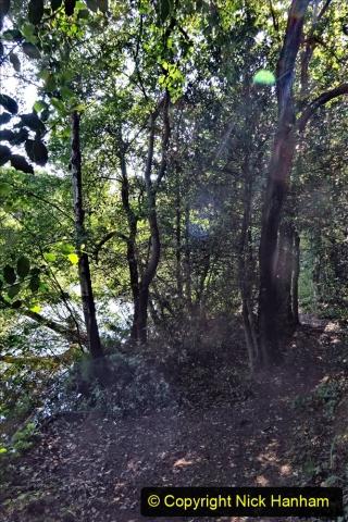 2020-05-31 Covid 19 Walk Alder Hills Nature Reserve Poole, Dorset. (15) 015