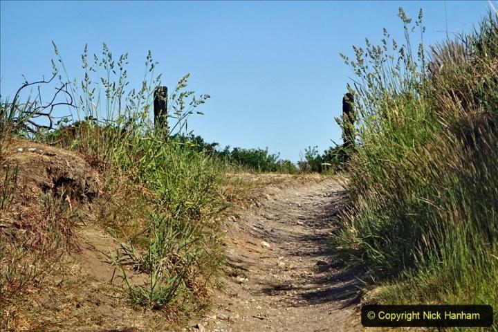 2020-05-31 Covid 19 Walk Alder Hills Nature Reserve Poole, Dorset. (31) 031