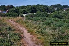 2020-05-31 Covid 19 Walk Alder Hills Nature Reserve Poole, Dorset. (23) 023