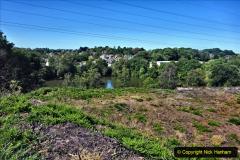 2020-05-31 Covid 19 Walk Alder Hills Nature Reserve Poole, Dorset. (25) 025