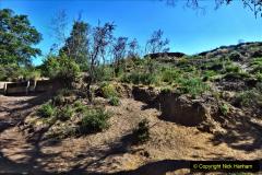 2020-05-31 Covid 19 Walk Alder Hills Nature Reserve Poole, Dorset. (29) 029