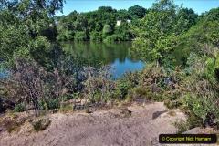 2020-05-31 Covid 19 Walk Alder Hills Nature Reserve Poole, Dorset. (30) 030