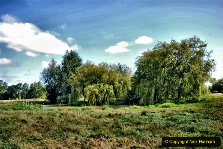 2020-June 08 Covid 19 Walk Canford Park SANG Bearwood, Poole, Dorset. (10) 010