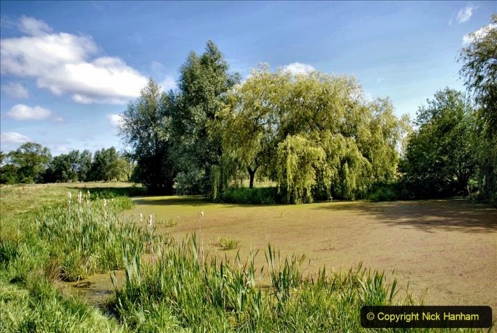 2020-June 08 Covid 19 Walk Canford Park SANG Bearwood, Poole, Dorset. (11) 011