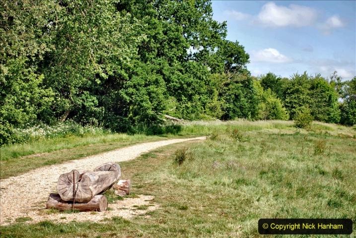 2020-June 08 Covid 19 Walk Canford Park SANG Bearwood, Poole, Dorset. (13) 013