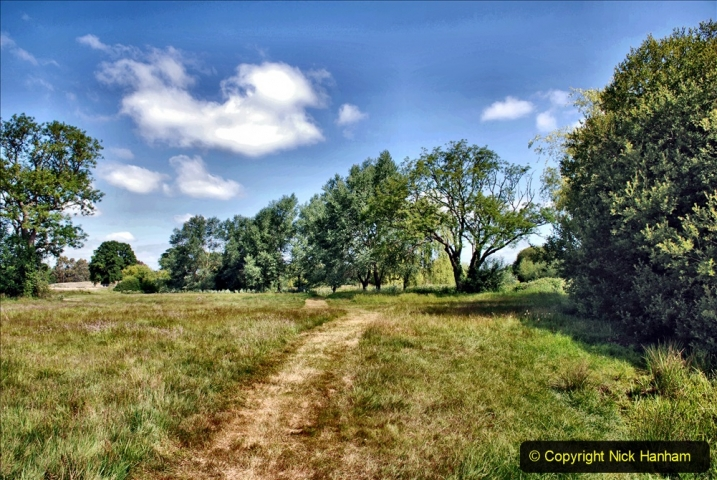 2020-June 08 Covid 19 Walk Canford Park SANG Bearwood, Poole, Dorset. (17) 017