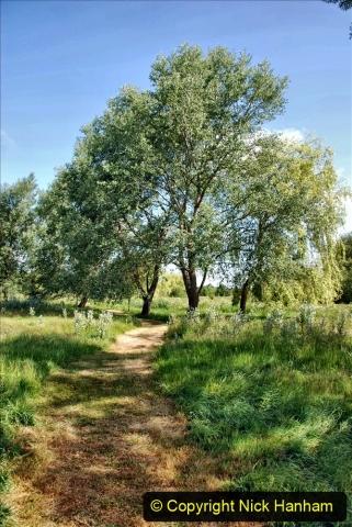 2020-June 08 Covid 19 Walk Canford Park SANG Bearwood, Poole, Dorset. (19) 019