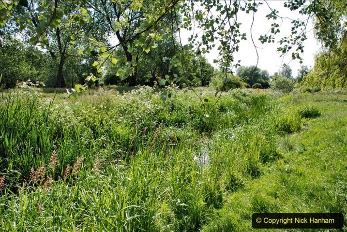 2020-June 08 Covid 19 Walk Canford Park SANG Bearwood, Poole, Dorset. (20) 020