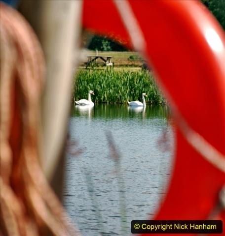 2020-June 08 Covid 19 Walk Canford Park SANG Bearwood, Poole, Dorset. (22) 022