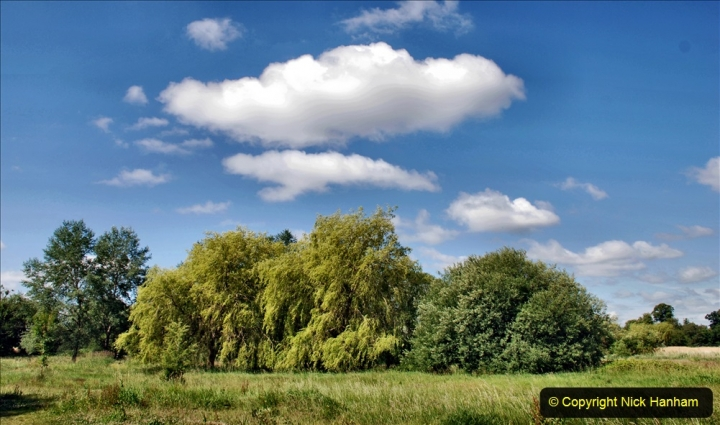 2020-June 08 Covid 19 Walk Canford Park SANG Bearwood, Poole, Dorset. (34) 034