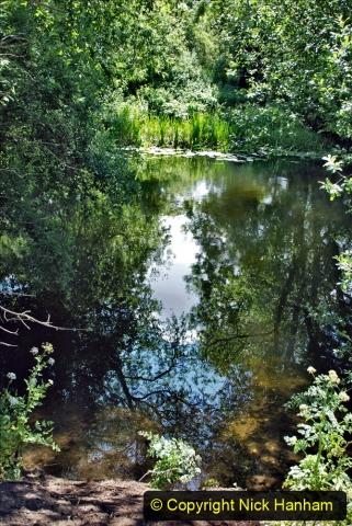 2020-June 08 Covid 19 Walk Canford Park SANG Bearwood, Poole, Dorset. (35) 035