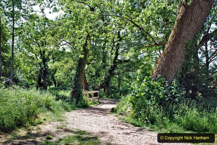 2020-June 08 Covid 19 Walk Canford Park SANG Bearwood, Poole, Dorset. (38) 038