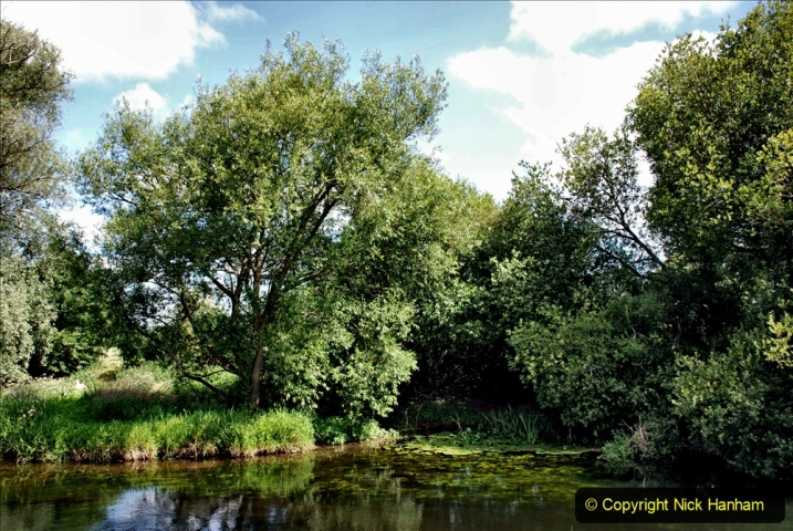 2020-June 08 Covid 19 Walk Canford Park SANG Bearwood, Poole, Dorset. (50) 050