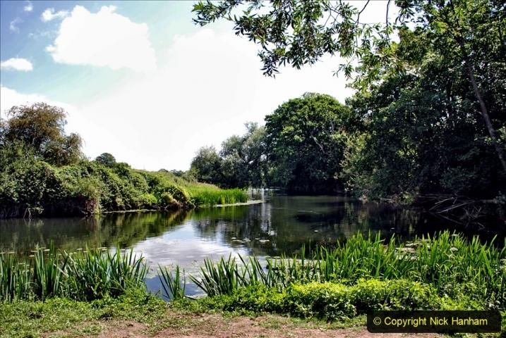 2020-June 08 Covid 19 Walk Canford Park SANG Bearwood, Poole, Dorset. (55) 055