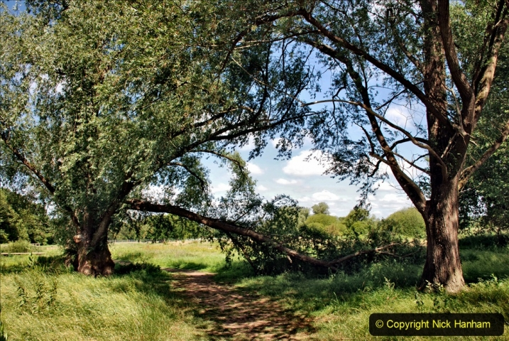 2020-June 08 Covid 19 Walk Canford Park SANG Bearwood, Poole, Dorset. (57) 057