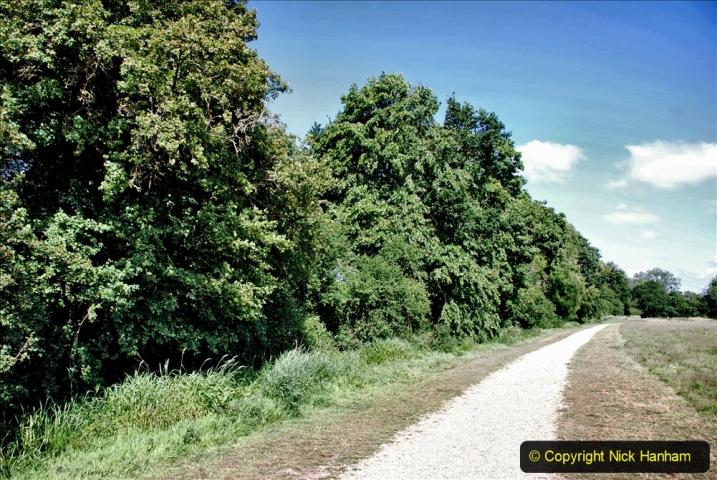 2020-June 08 Covid 19 Walk Canford Park SANG Bearwood, Poole, Dorset. (6) 006