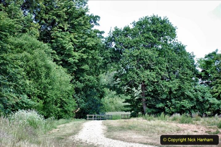 2020-June 08 Covid 19 Walk Canford Park SANG Bearwood, Poole, Dorset. (8) 008