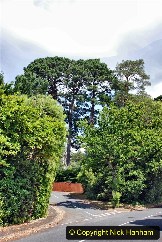 2020-06-09 Covid 19 Walks Constitution Hill & Evening Hill Poole, Dorset. (25) 025
