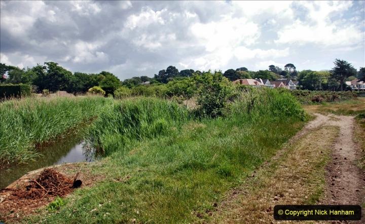 2020-06-09 Covid 19 Walks Constitution Hill & Evening Hill Poole, Dorset. (15) 015