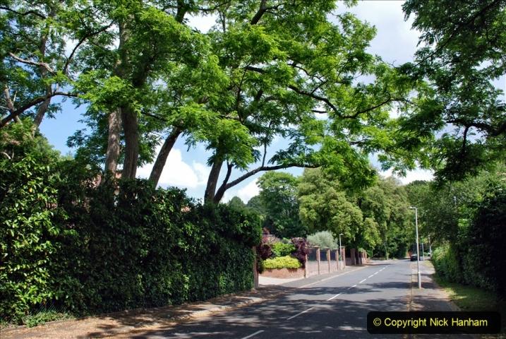 2020-06-09 Covid 19 Walks Constitution Hill & Evening Hill Poole, Dorset. (23) 023