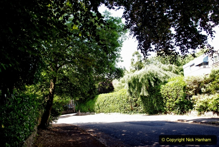 2020-06-09 Covid 19 Walks Constitution Hill & Evening Hill Poole, Dorset. (31) 031