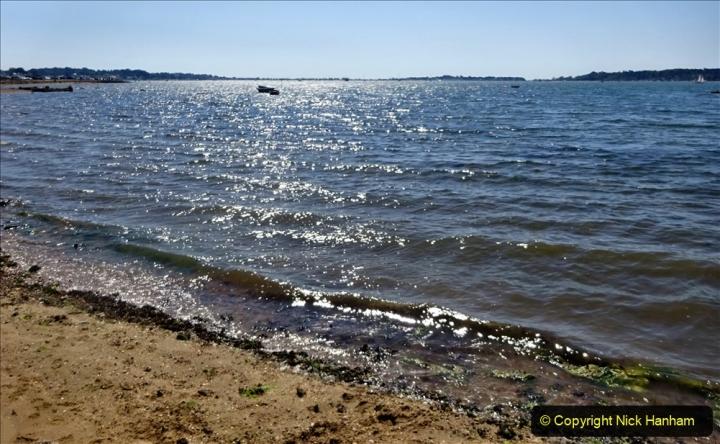 0012020-06-25 Covid 19 Walk Home-Poole Park-Poole Town-Poole Quay-Baiter-Home. (124) 124