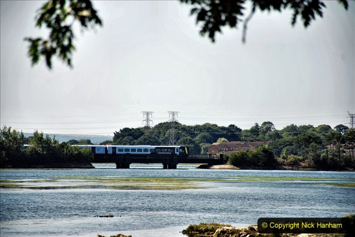 2020-07-31 Covid 19 Walk Poole Inner Harbour to Upton Country Park and return. (122)