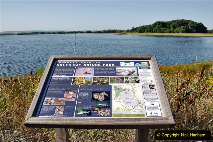 2020-07-31 Covid 19 Walk Poole Inner Harbour to Upton Country Park and return. (29)