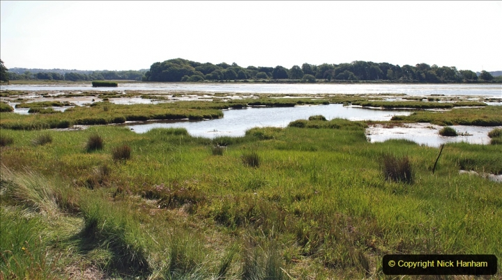 2020-07-31 Covid 19 Walk Poole Inner Harbour to Upton Country Park and return. (49)