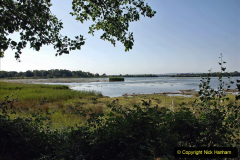 2020-07-31 Covid 19 Walk Poole Inner Harbour to Upton Country Park and return. (43)