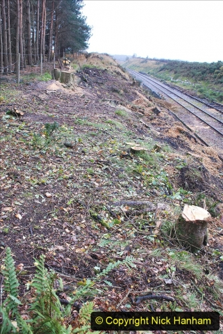 2020-10-30 Half Term week in Dorset on the SR. (102) 102