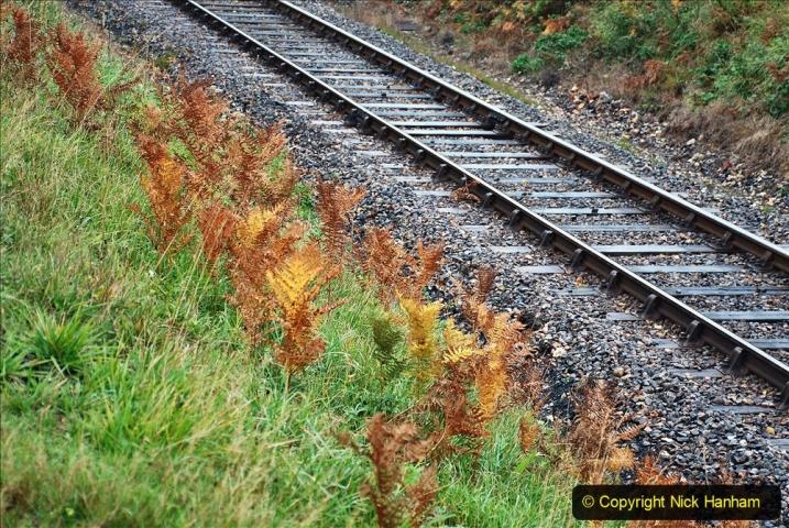 2020-10-30 Half Term week in Dorset on the SR. (48) 048